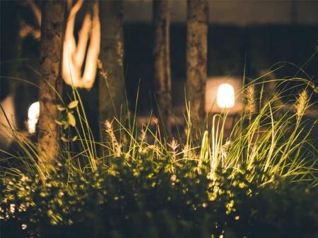 ¡6 trucos para iluminar tu jardín y sacarle el máximo partido!